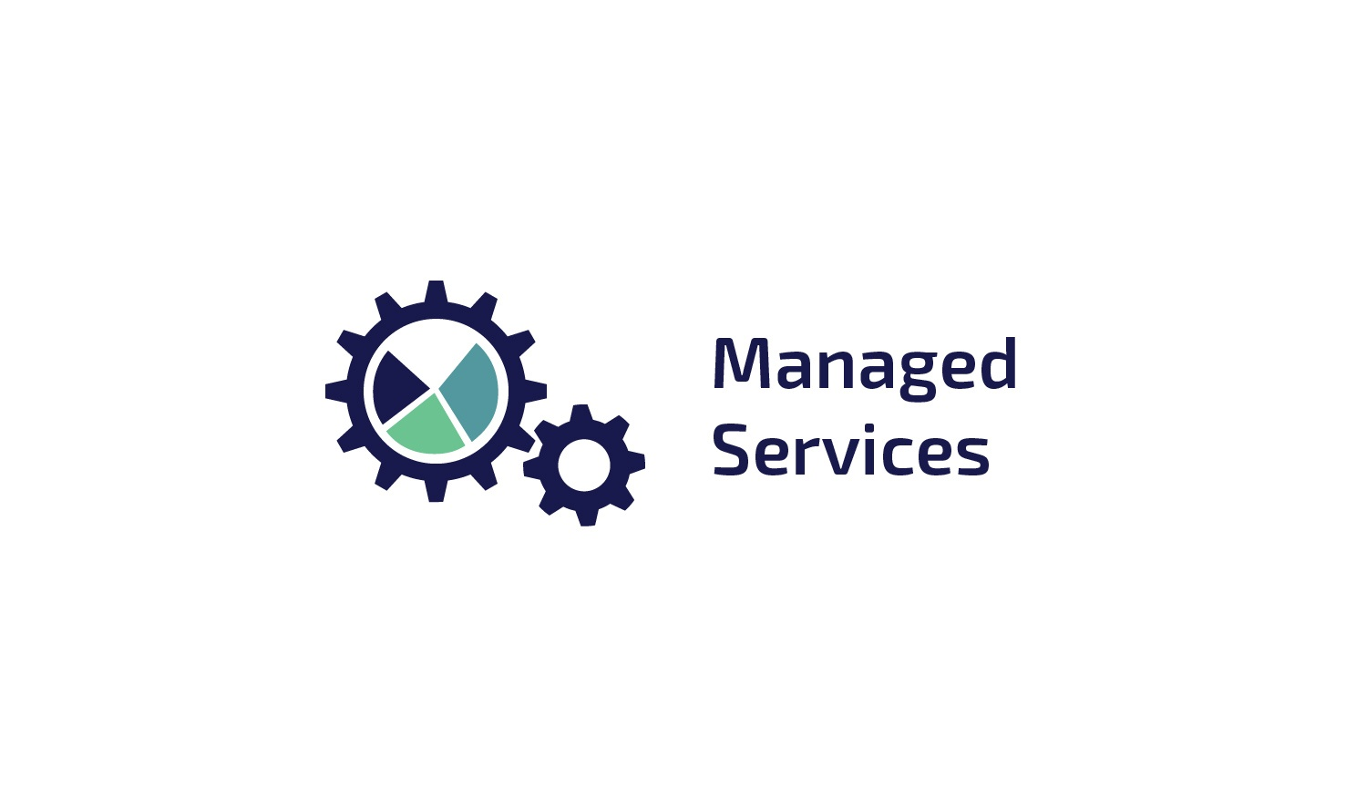 Viadex- Managed-Services