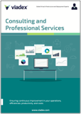 Consulting and Professional Services Brochure
